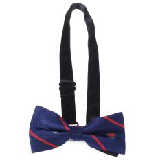 Stylish Double-Deck Bow Tie For Formal Dress 10 (Intl)