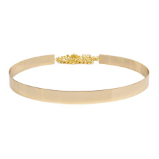 TP Fashion Metal Band And Alloy Buckle Belt (Gold) - Intl