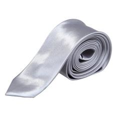 Trendy Man's S Polyester Silk Neck Tie Sliver Grey
