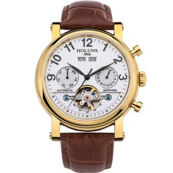 Hazyasm HOLUNS Watch For Men Automatic Mechanical Watches Fashion Hollow Belt Male Table Back Through Mechanical Watches Tourbillon (Gold)