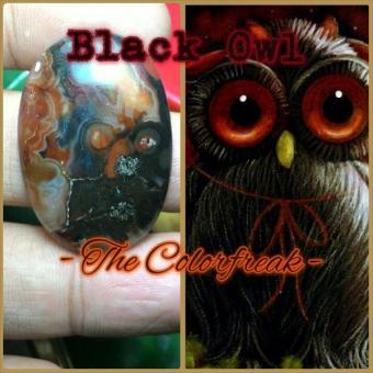 harga Batu Gambar Burung Hantu Hitam (The Black Owl) Lazada.co.id