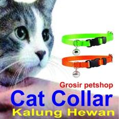 kalung kucing dan anjing