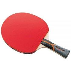 Butterfly Stayer 3000 Bet Bat Pingpong Tennis Meja