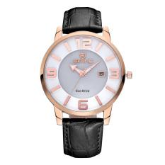 CITOLE SKONE Newest Luxxury Solar Energy Date Watch Women Montre Femme Charge Leather Casual Quartz Watch Bracelet Wristwatch Montre (Black)