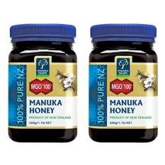 Manuka Health - Manuka Honey MGO 100+  Reseller Package 2 Botol