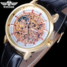 WINNER Casual Men'S Mechanical Hand Wind Leather Strap Skeleton Dial Gold Case Analog Wristwatches