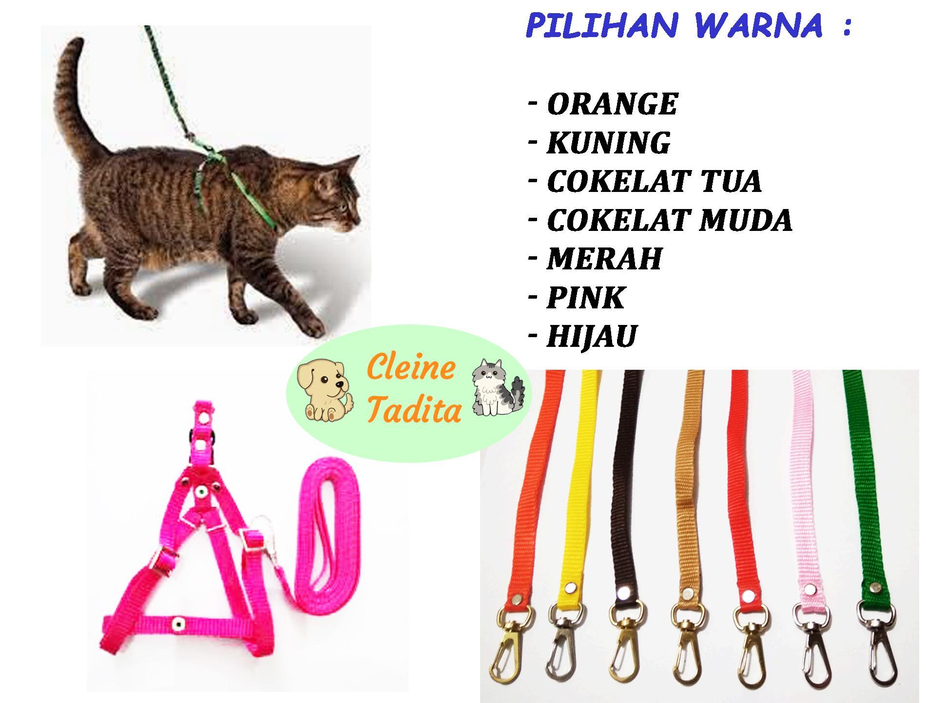 Perlengkapan Kucing Peliharaan Whiskas Dry 480gr Makanan Kering Rasa Tuna Cleine Tadita Petshop Tali Tuntun Harnes Dan Anjing