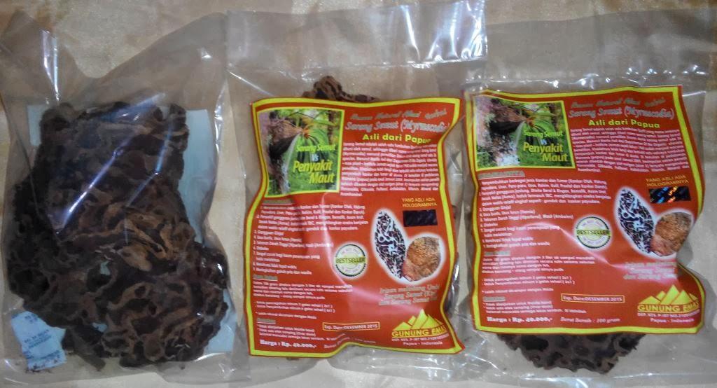 Sarang Semut ASLI Papua Wamena / Sarang Semut Papua Netto 100gr Original 100% Murah Terlaris