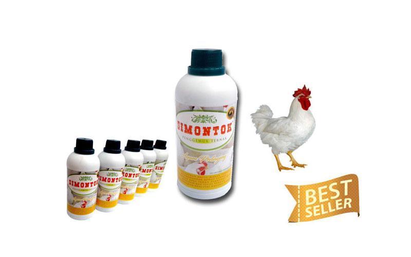 Vitamin Ayam Organik Untuk Pedaging Potong Broiler