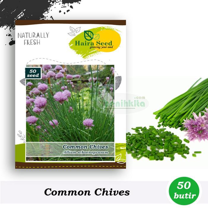 Benih-Bibit Daun Bawang Chives (Haira Seed)