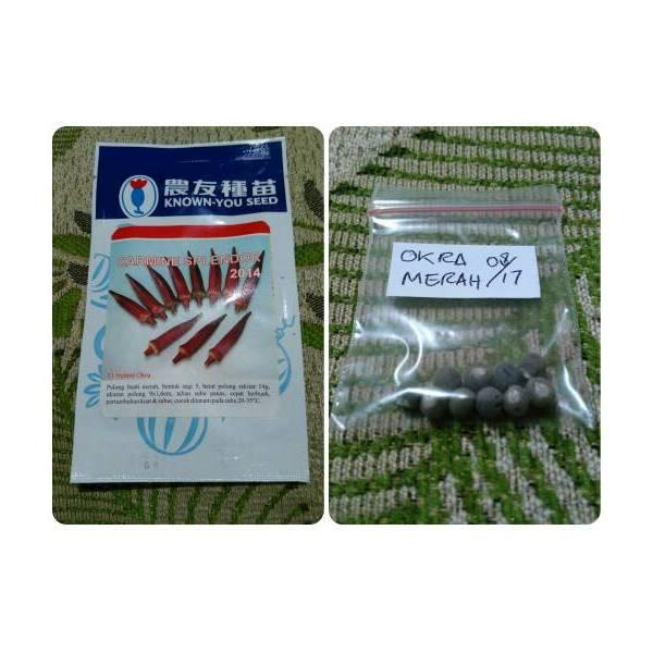 SPESIAL 10 Seeds Benih Okra Merah Carmine Splendor Known You Seed- R