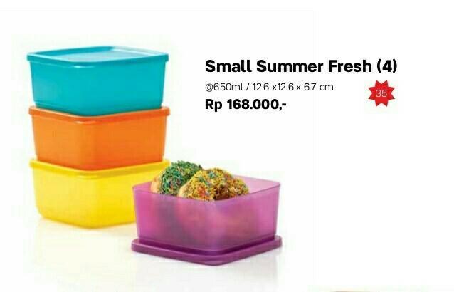 TERBARU Small summer fresh Tupperware ecer (1pcs)