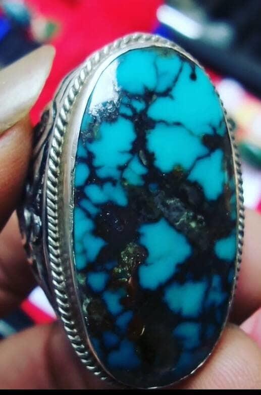 Pirus Persia Biru Toska