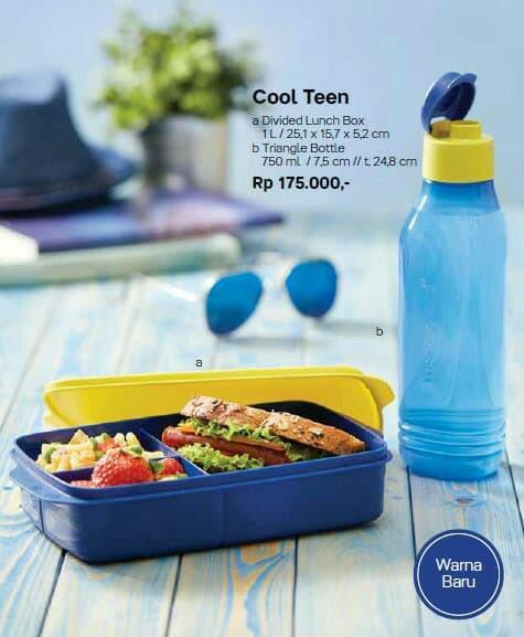 TERBARU Cool Teen Tupperware lunch set
