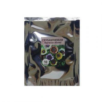 Bibit Bunga Benih Chrysanthemum Rainbow Mix 10 Biji – Kemasan Foil
