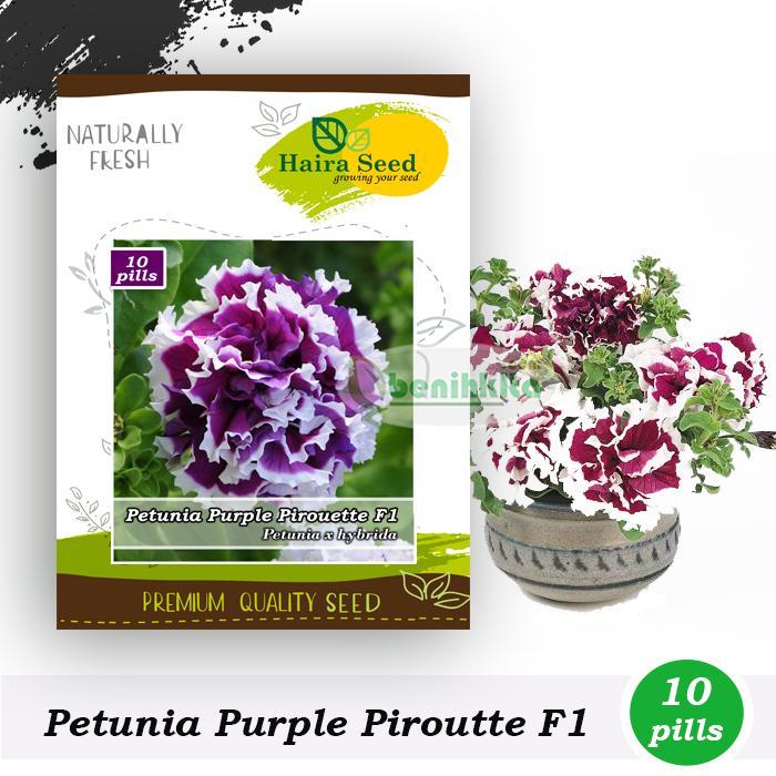 Benih-Bibit Bunga Petunia Purple Pirouette F1 (Haira Seed)