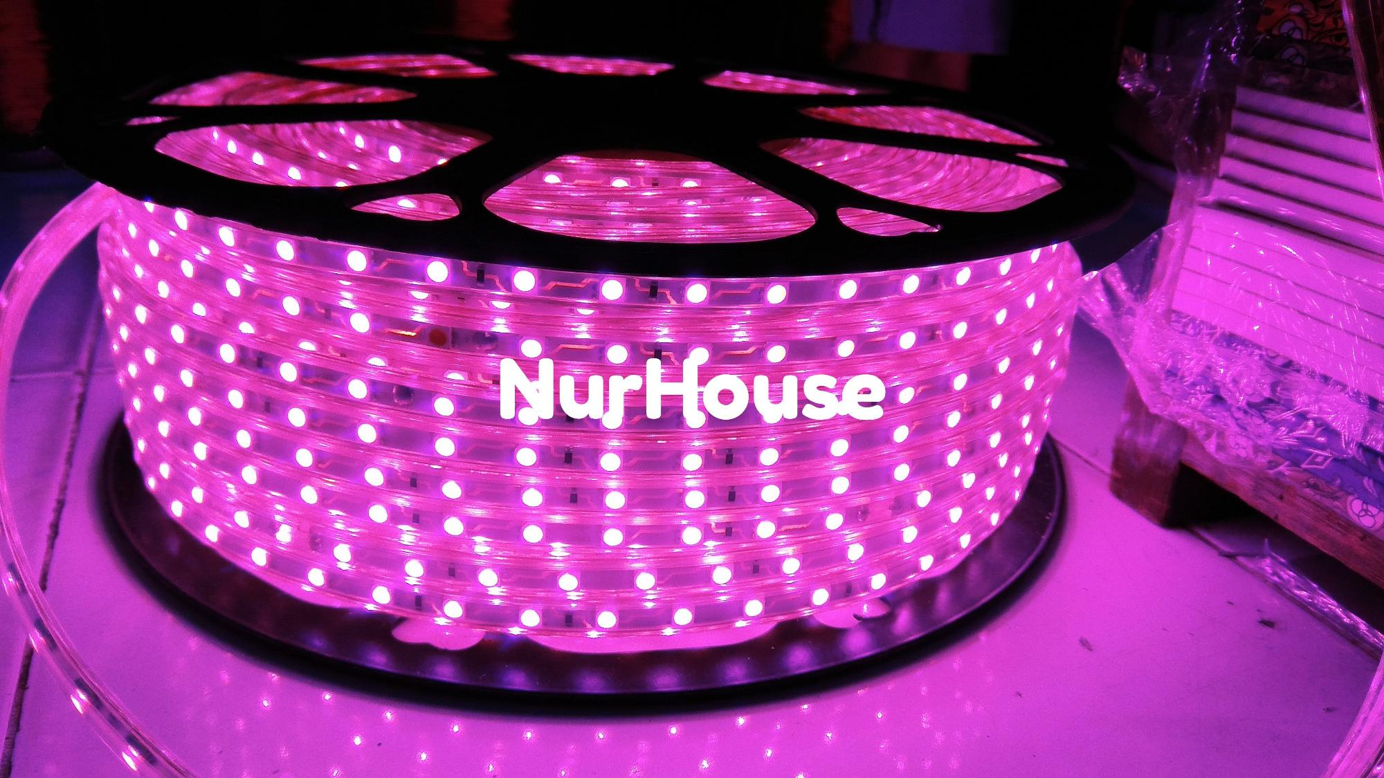 Lampu selang led strip ungu 5050 lampu hias lampu etalase