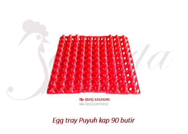 egg tray puyuh rak telur plastik puyuh