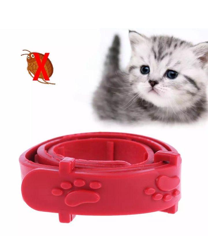 kalung kutu tungau caplak kucing anak anjing flea and tick collar