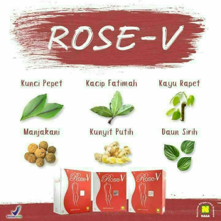 Rose V Original / Agen Nasa Bekasi