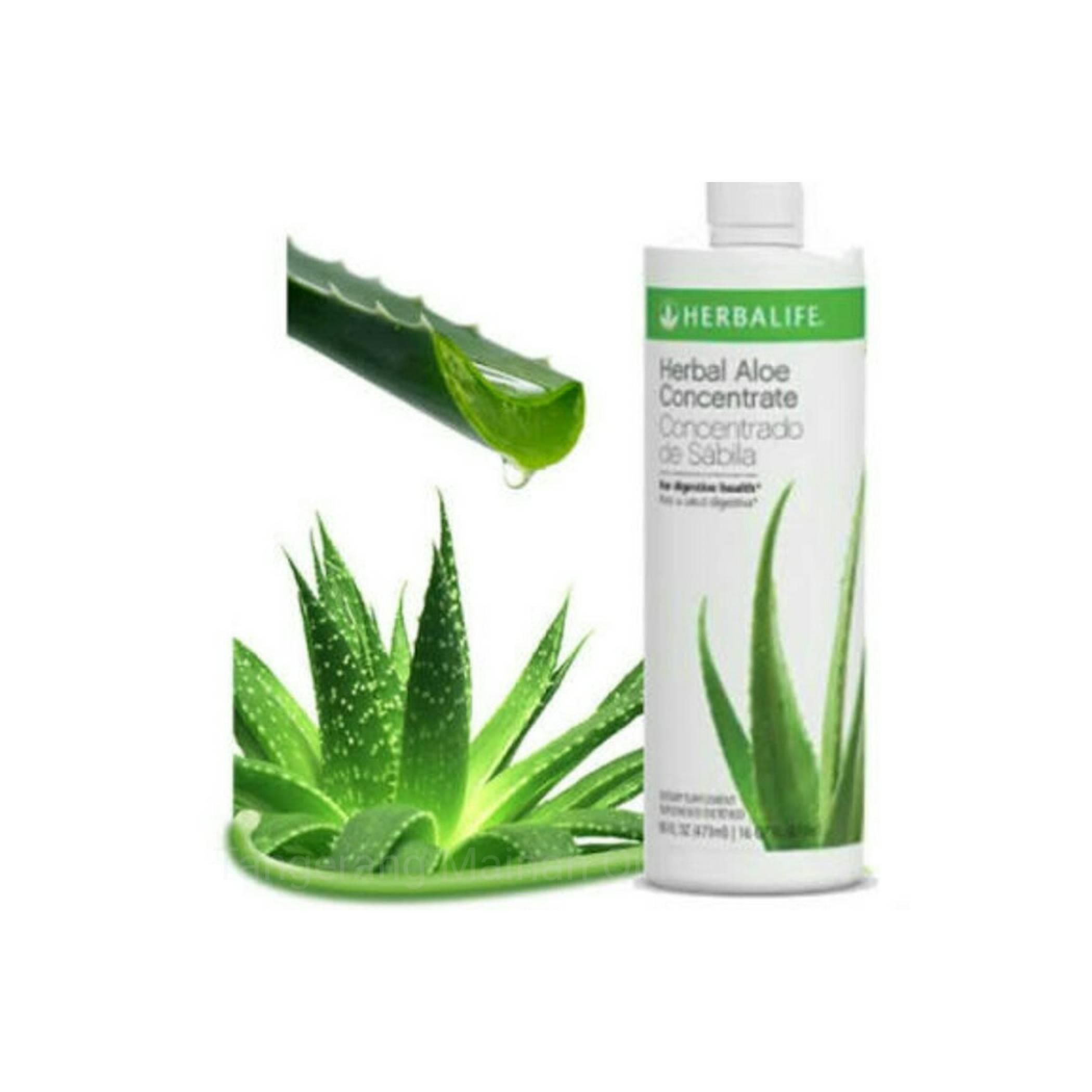 Sale Termurah Herbal Life Aloe Concentrate Untuk Pencernaan Maag Murah