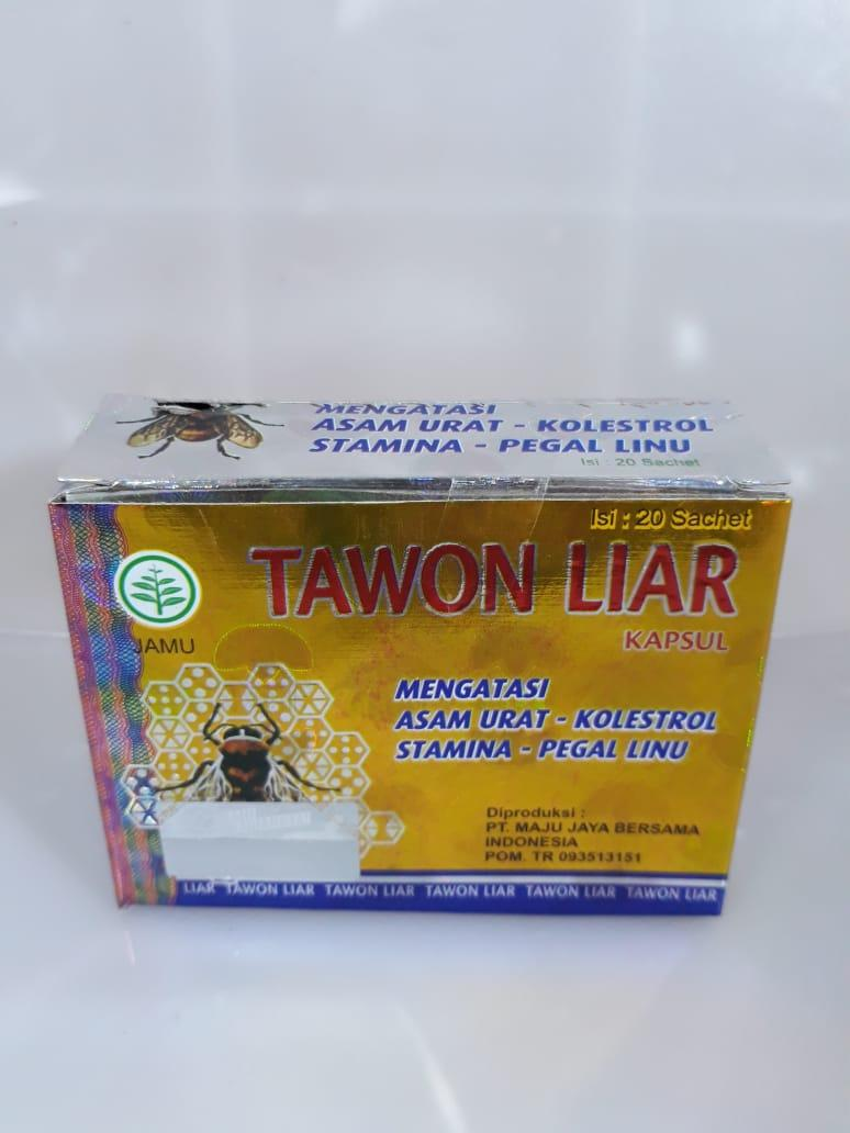 Tawon Liar 2box Kapsul Obat Asam Urat Kolesterol Pegal Linu Stamina Herbal Legal