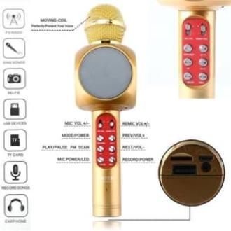 78Bintang Paling Laku Mic Karaoke Portable Bluetooth Portable Wster WS-1816 - RANDOM