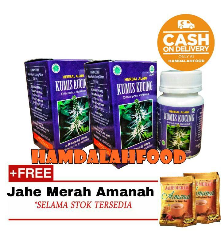 Hamdalahfood Obat Batu Ginjal Kapsul Ekstrak Kumis Kucing Inayah Paket 2+ Jahe Amanah