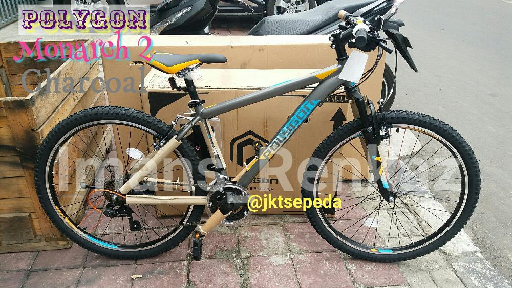 MTB POLYGON MONARCH 2