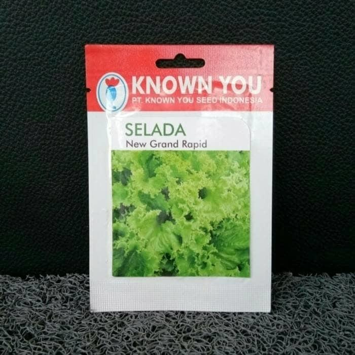 Obral Murah Benih/Bibit Selada Grand Rapids (Known-You Seed)