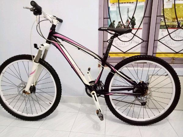 sepeda polygon cleo 3 no xtrada cozmic united thrill giant mosso shimano wimcycle