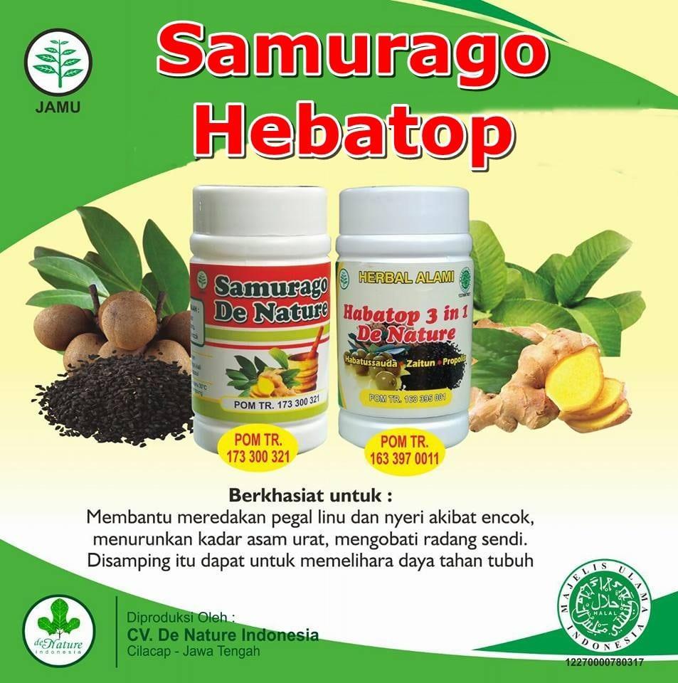 Herbal Ricalinu Obat Asam Urat Pegel Linu Rheumatik Encok Jamu Zam Pegal Dan Reumatik Super Ampuh 100 Herbalidr399500 Rp 550000
