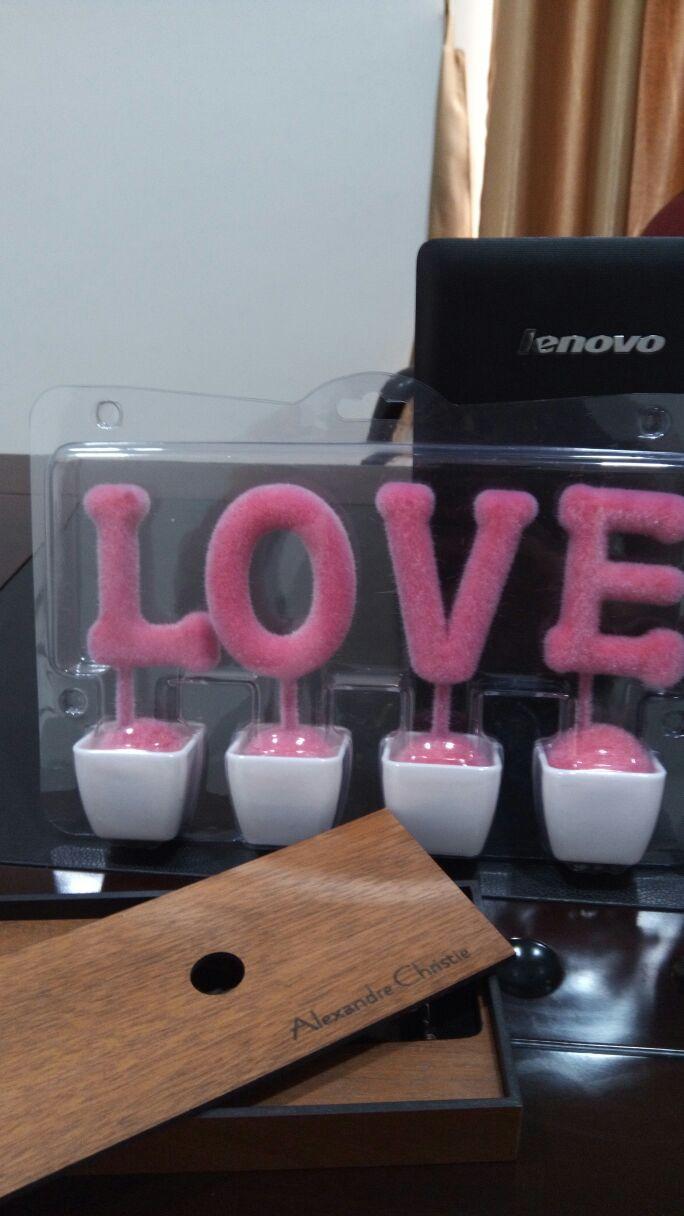 Pajangan Tulisan LOVE Dekorasi Ruangan Tanaman Love Warna Pink