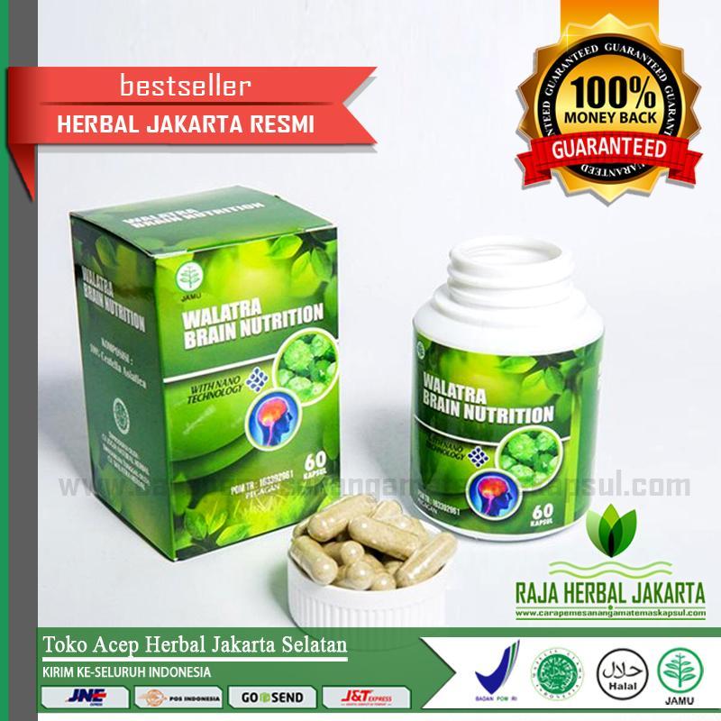 Walarta Brain Nutrition Kapsul Original Asli Di Jakarta Selatan - Penambah Daya Ingat - Kecerdasar Otak - Obat Lupa - Pikun - Pusing - Migrain - Sakit Kepala - Stroke -DLL