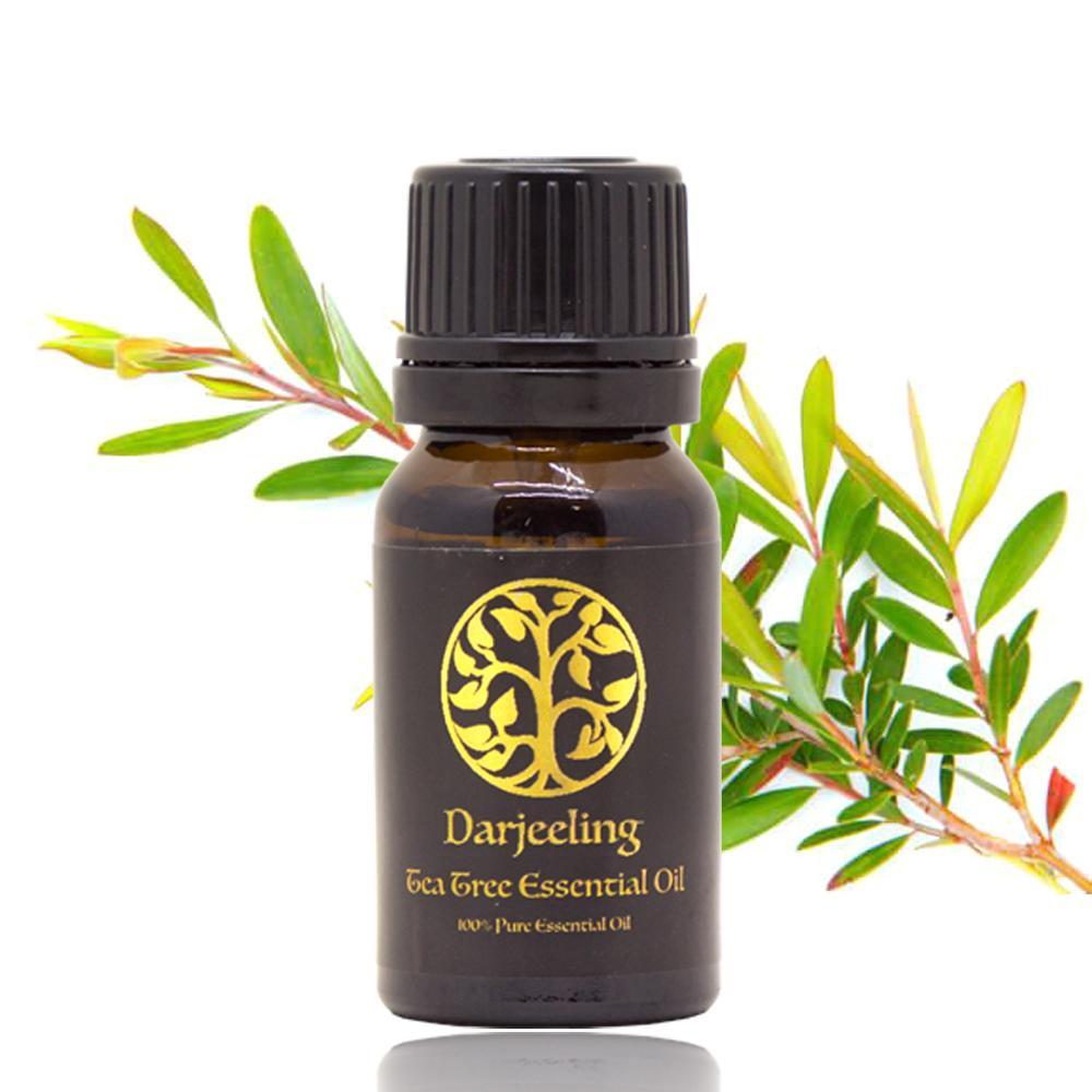 Tea Tree Essential Oil / Minyak Tea Tree 100% Alami - 10ml