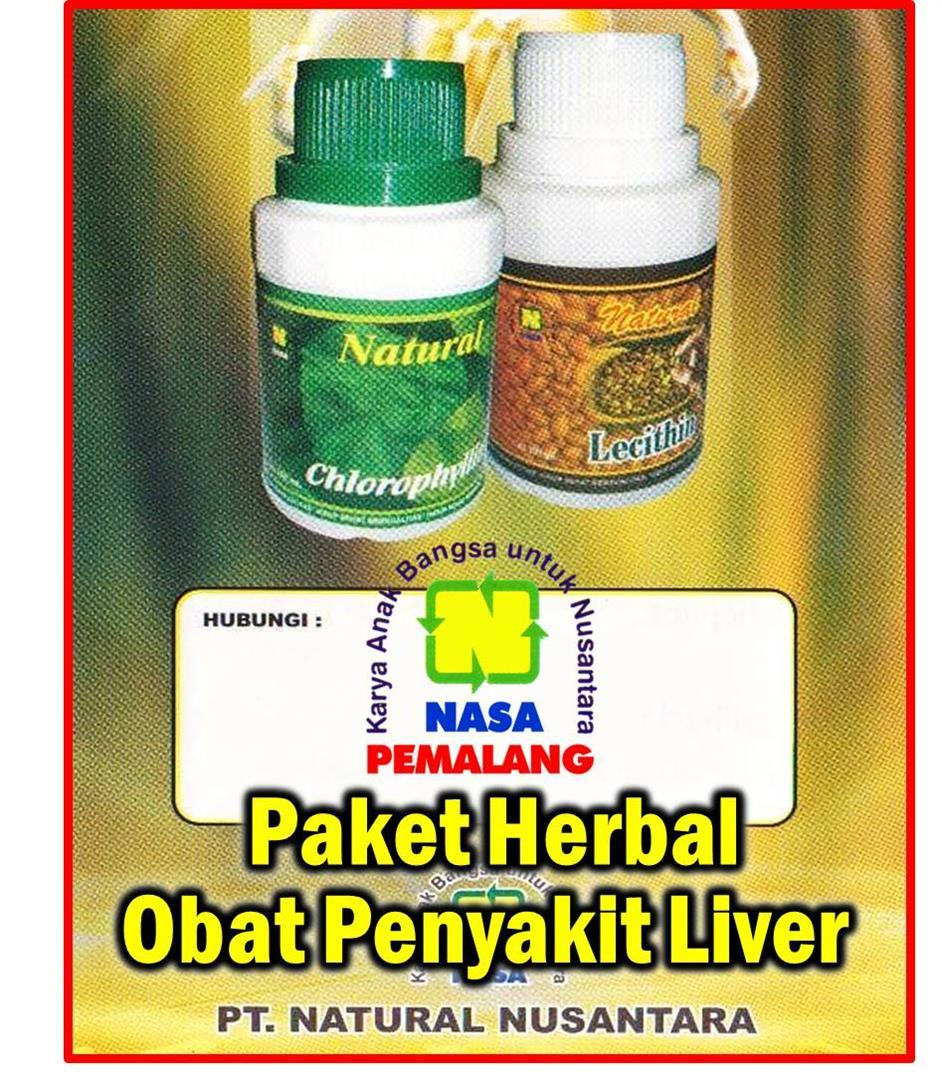 Paket Herbal Obat Penyakit Liver ( Lecithin - Chlorophyllin ) - Nasa Pemalang