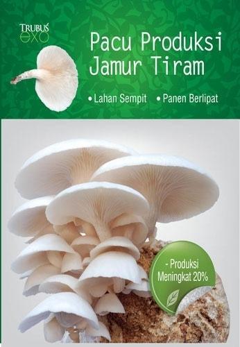 Hemat 20%!! Buku Pacu Produksi Jamur Tiram - ready stock