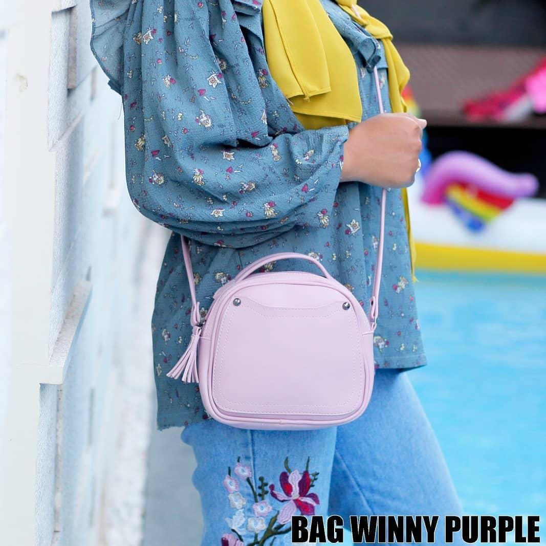 Jual Sony Cyber Shot Dsc H300 Digital Camera Resmi 201mp Prosummer Garansi Tas Wanita Bag Winny Purple