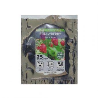 Bibit Bunga Benih Strawberry Alpine Rugen 25 Biji – Kemasan Foil