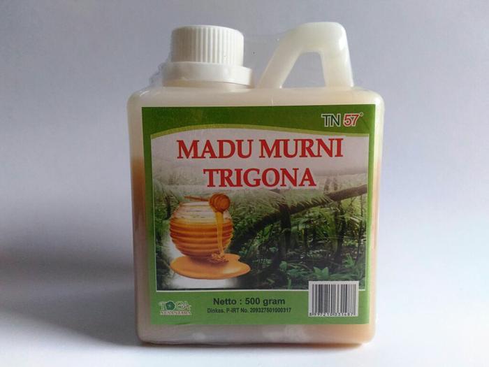 Madu Murni Trigona 500 gr TN