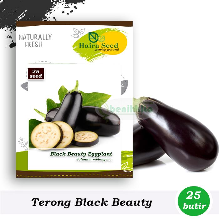 Benih-Bibit Terong Black Beauty (Haira Seed)