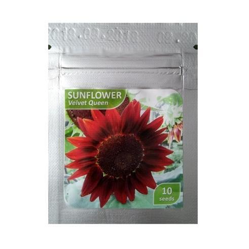 Bibit Bunga Benih Sunflower Velvet Queen 10 Biji – Kemasan Foil
