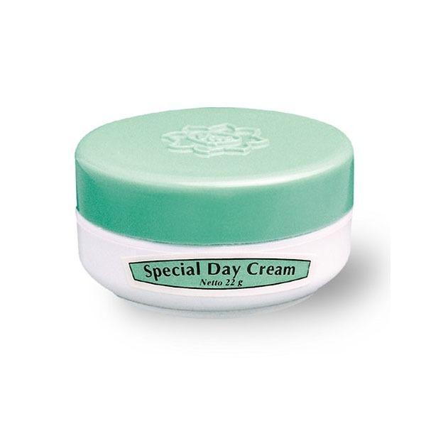 Viva Special Day Cream [22g]