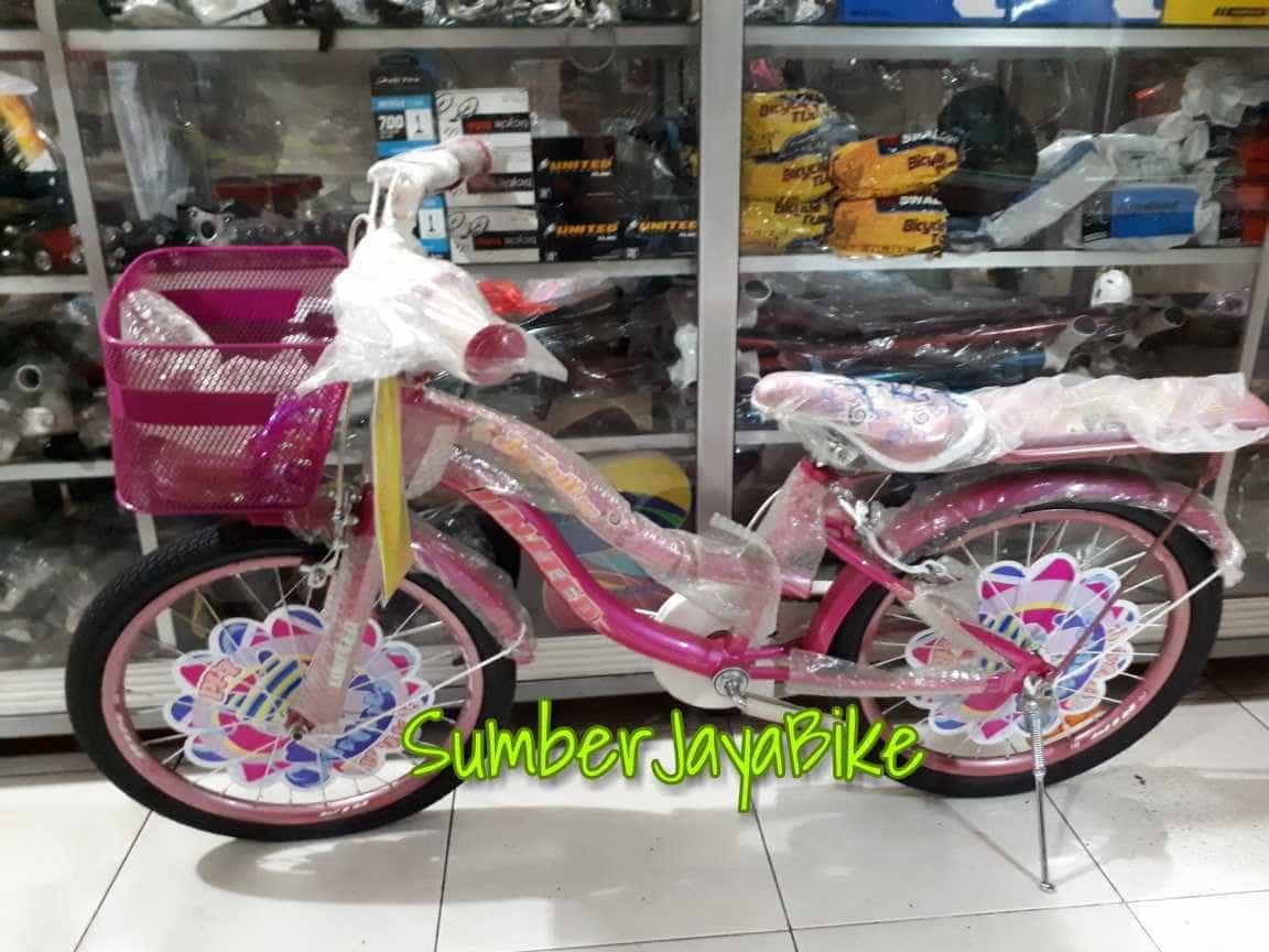 sepeda anak mini 20