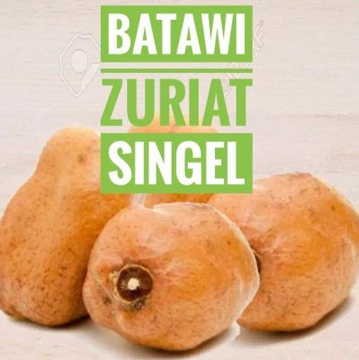 Buah Zuriat Singel By Toko Arrul.