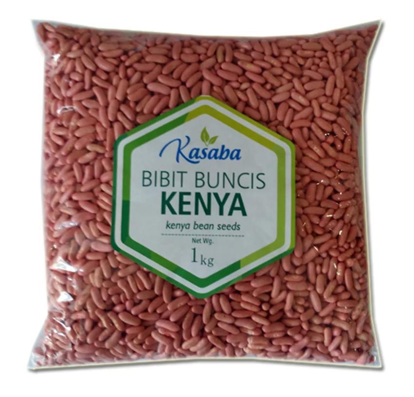 Benih Bibit Biji Buncis Kenya Kualitas Ekspor Baby Buncis 1 Kg