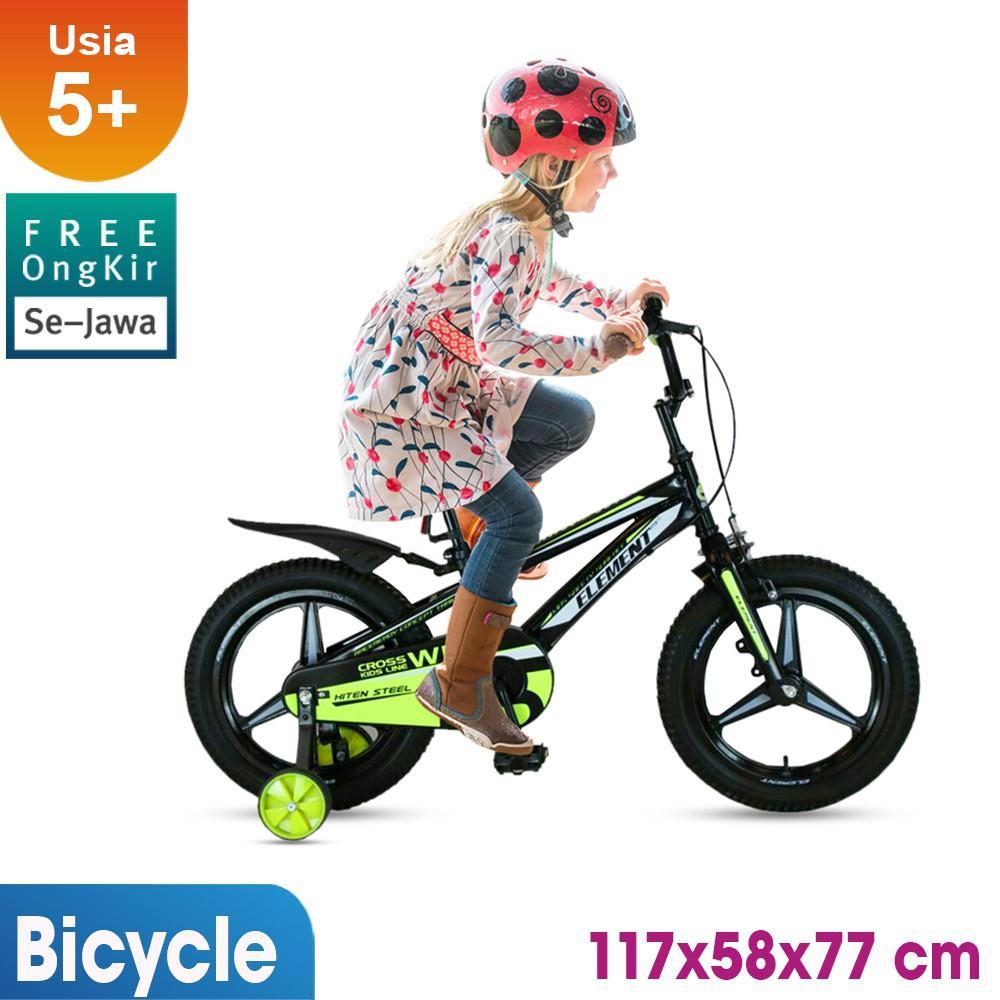 Sepeda Anak Element Wild 16 inch / mainan edukasi / mainan anak / Kado Ulang Tahun anak KLX