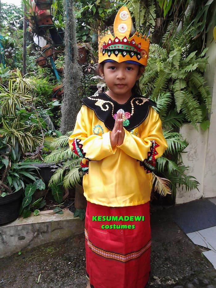 Promo: Daerah Banjarmasin Tk | Baju Adat Kostum Karnaval Pawai Anak Wanita - ready stock