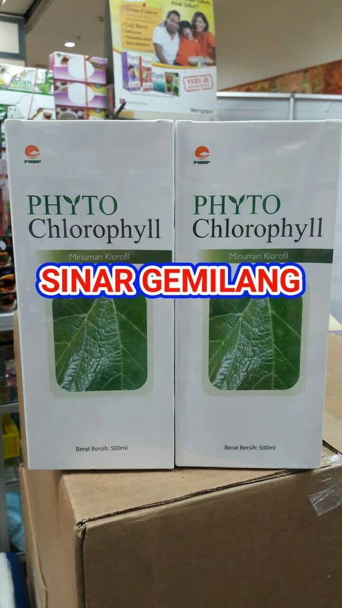 Phyto Chlorophyll Strong Antioxidant Spec Dan Daftar Harga Terbaru Klorofil Chlorophyl Sinergy Zatxre