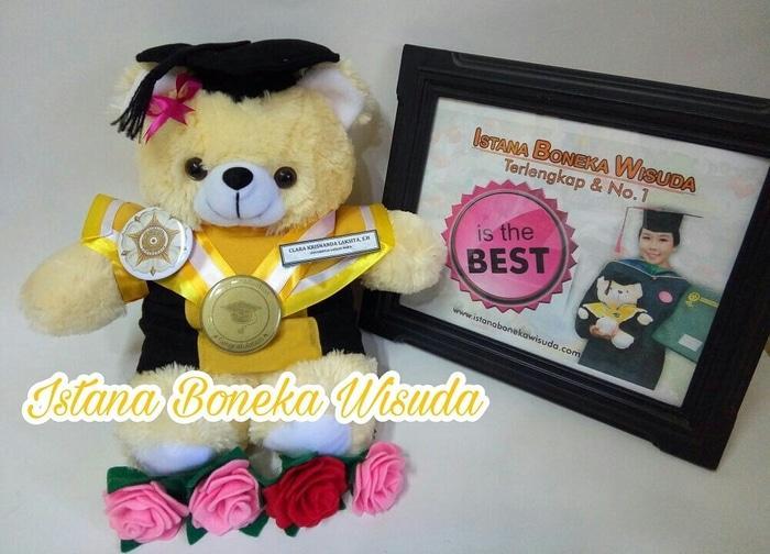 Hemat 10%!! Boneka Wisuda Semarang | Souvenir Wisuda | Kado Wisuda - ready stock